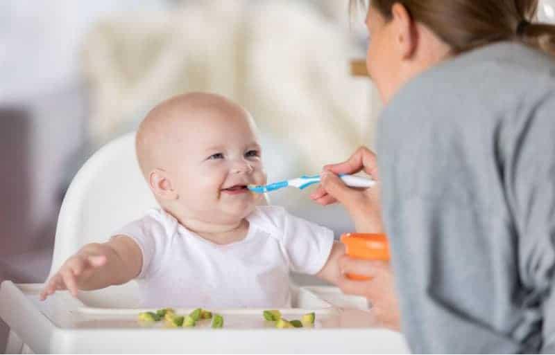 8 aylık bebek beslenmesi