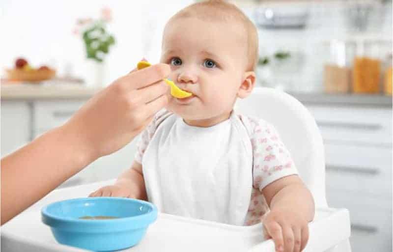 bebek beslenmesi ve ek gıdaya geçiş serüveni