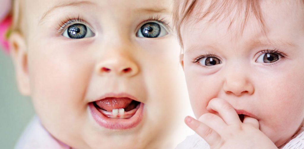 bebeklerde diş çıkarma dönemi ve diş kaşıyıcı