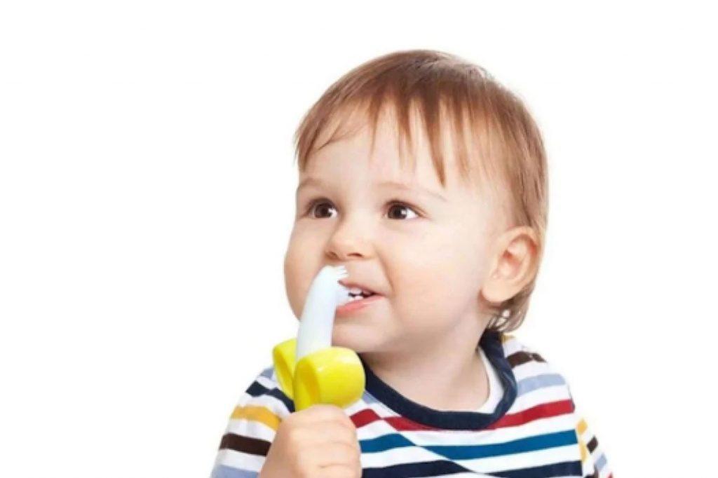 bebeklerde diş kaşıyıcı ne zaman kullanılır