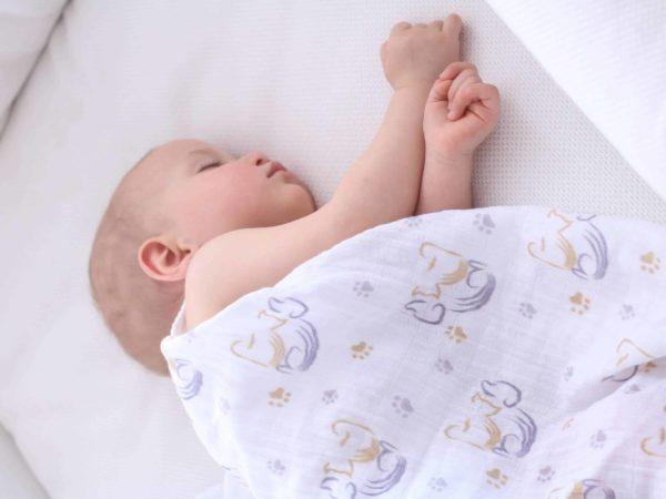 Posh Baby 2'li Müslin Örtü - Kedi Köpek