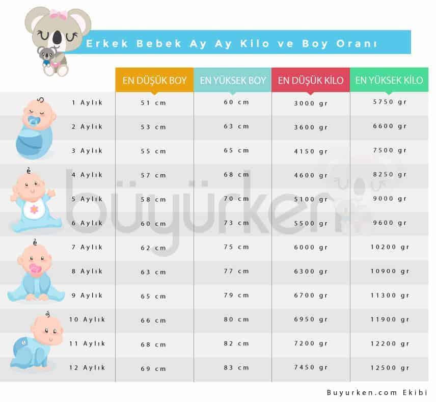 erkek bebek boy kilo oranı