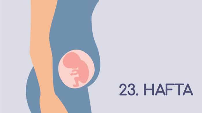 23 Haftalık Gebelik Rehberi