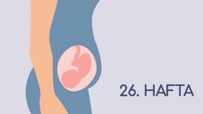 26 Haftalık Gebelik Rehberi