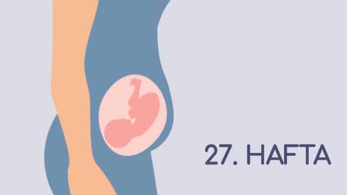 27 Haftalık Gebelik Rehberi