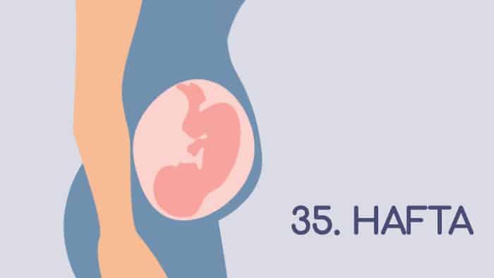 35 Haftalık Gebelik Rehberi
