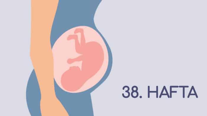 38 Haftalık Gebelik Rehberi