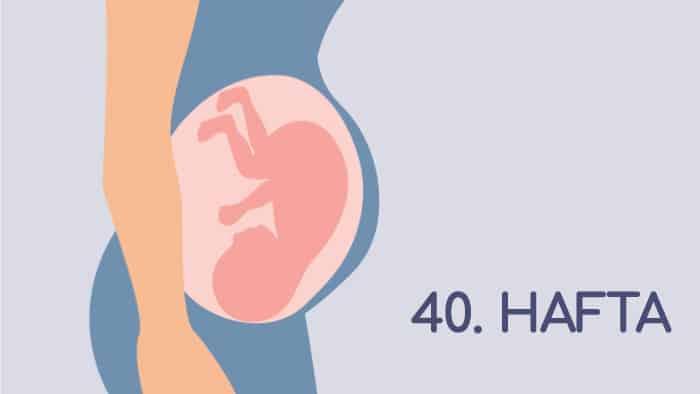 40 Haftalık Gebelik Rehberi